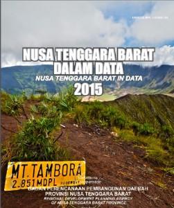 NTB DALAM DATA 2015