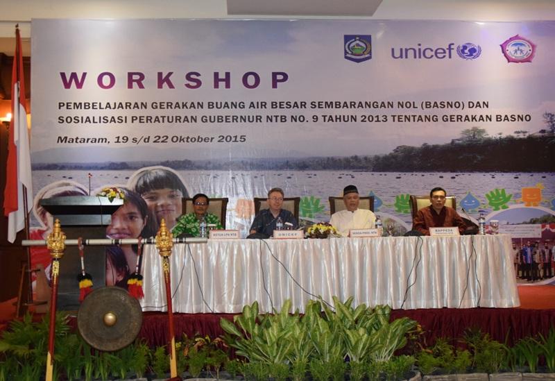 SOSIALISASI PERAN DAN FUNGSI PEMERINTAH DALAM PROGRAM KERJASAMA DENGAN UNICEF