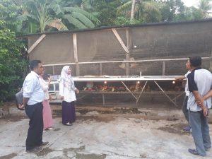 Peninjauan hasil penetasan berupa bibit unggas (Ayam dan Bebek) di Desa Batu Tulis